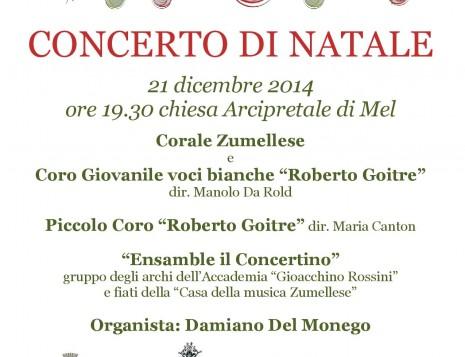 Locandina concerto Natale 2014 (1) (1)-page-001